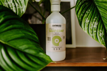 Biobizz Leaf Coat recenzja (2)