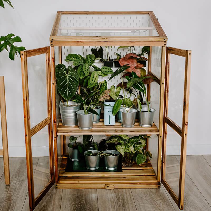 Drewniana szklarnia dla roślin (1)