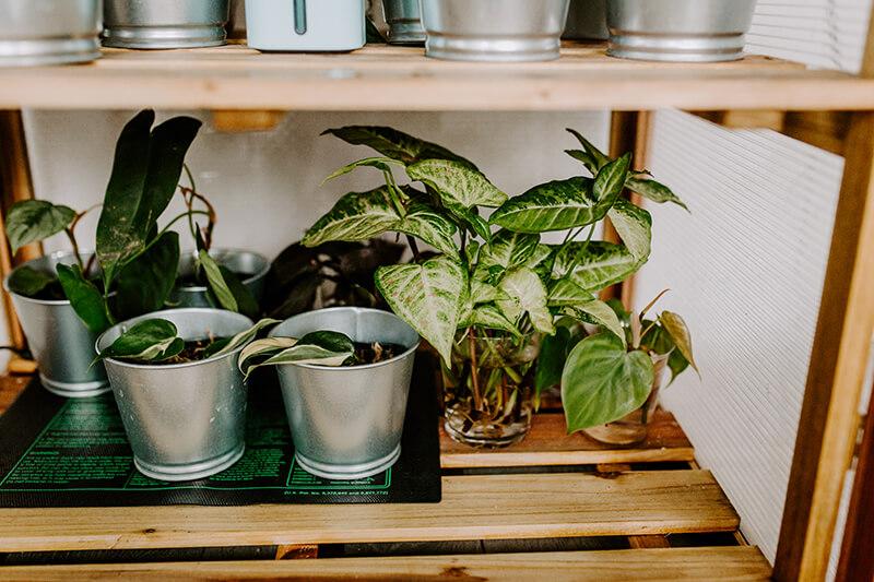 Mata grzewcza dla roślin
